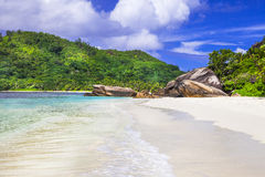 White sandy beach scenery Stock Image