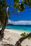 White sandy tropical beach in Maldives Royalty Free Stock Photo