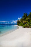 White sandy tropical beach in Maldives Royalty Free Stock Image