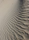 White sandy waves. Stock Image