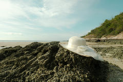White sateen hat. White hat is on the rock at  beautiful beach Stock Photos