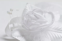 White satin rose Royalty Free Stock Photography