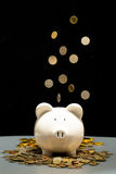White saving pig with coins falling Royalty Free Stock Image