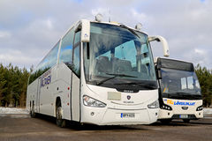 White Scania Irizar and VDL Citea Buses Parked Stock Images