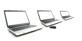 White screen in three laptop Royalty Free Stock Images