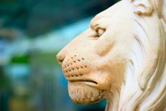 Sculpture lion head royalty free stock photo