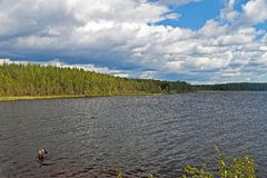 White Sea-Baltic Canal in Karelia. Segezha district, North Russia Royalty Free Stock Photography