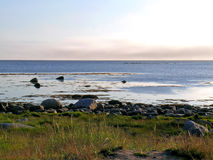White sea coast Royalty Free Stock Image