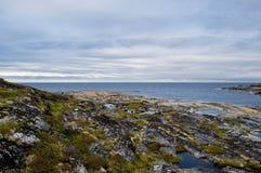 White sea landscape stock images