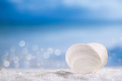 White sea shell  on   glitter and sea Stock Photos