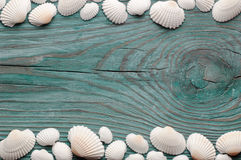 White sea shells forming top and bottom wavy borders on the blue wooden board, view from above Royalty Free Stock Photo
