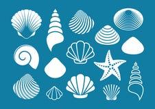 White sea shells and starfish royalty free illustration