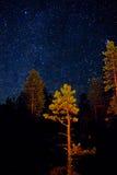 White Sea starry night Royalty Free Stock Image
