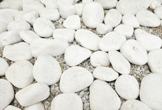 White sea stones Stock Images