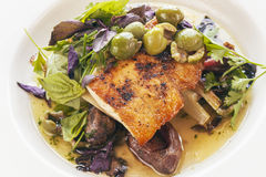 White seabass with olives and organic greens Royalty Free Stock Image