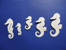 White seahorses. Paper cutting. Royalty Free Stock Photos