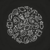 White sealife linear icons round concept. On chalkboard. Vector illustration Stock Image