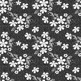 White seamless lacy lace pattern on black Royalty Free Stock Image