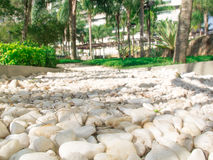 White Seixo pebbles  Stones textured background Royalty Free Stock Photos