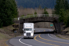 White semi truck with bridge and trees background Royalty Free Stock Photo