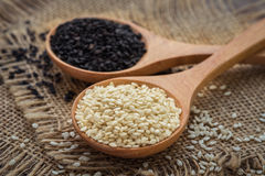 White sesame and black sesame seed on wooden spoon Stock Photos