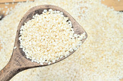 White sesame on table stock photography