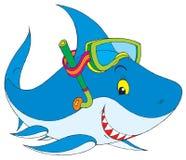 White Shark Stock Photos
