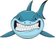 White shark. Vector illustration: toothy white shark Vector Illustration