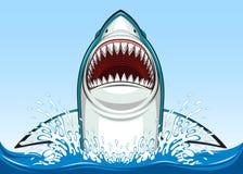 White shark Royalty Free Stock Photo