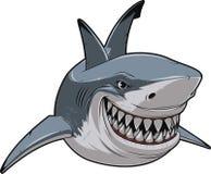 White shark. Vector illustration, toothy smiling white shark swims stock illustration