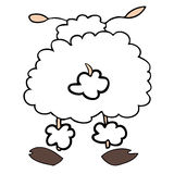 White sheep back. Stock Photo