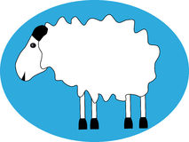 White sheep. On blue background stock illustration