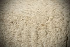 White sheep fur with vignette Royalty Free Stock Images