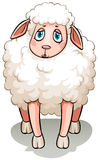 A white sheep Royalty Free Stock Photography