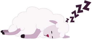 White Sheep Sleeping Royalty Free Stock Image