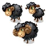White sheep. Vector animal in cartoon style Stock Photos