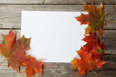 White sheet with autumn leaves Stock Image