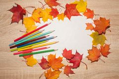 White sheet of paper and colored pencils in a frame of autumn maple leaves. It is lying on a wooden table royalty free stock photos
