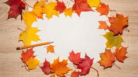 White sheet of paper and a graphite pencil in a frame of autumn maple leaves. stock images