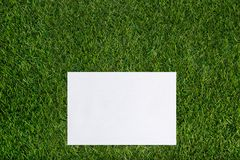 White sheet of paper lying on the grass Royalty Free Stock Images