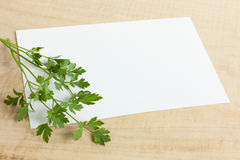 White sheet of paper and parsley on a wood Royalty Free Stock Images