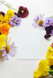 White sheet of paper surrounded with colourful flowers Royalty Free Stock Image