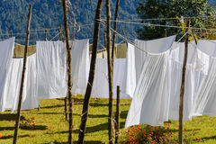 White sheets drying Royalty Free Stock Images