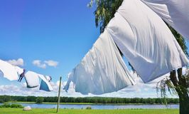 White sheets hanging on clotheslines Stock Image