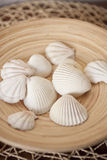 White shells in wooden bowl. Close up on white shells in wooden bowl Royalty Free Stock Photography