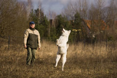 White shepherd with master Stock Photo