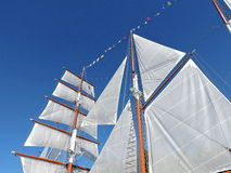 White ship sails royalty free stock images