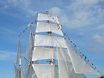 White ship sails Stock Photos