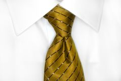 White Shirt Gold Tie Stock Photo