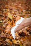 White shoes bride and autumn yellow maple leaves Stock Images
